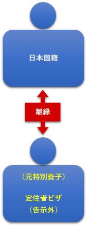 図14:離縁された特別養子の定住者ビザ